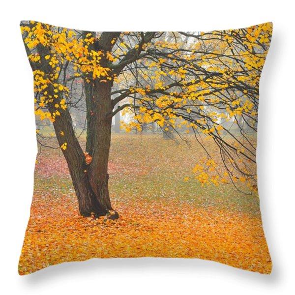 Autumn Fallen Throw Pillow by Terri Gostola