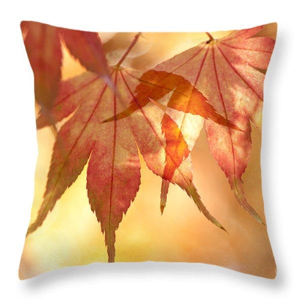 Autumn Glow Throw Pillow by Anne Gilbert