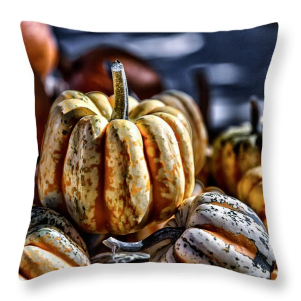 Autumn Glow Throw Pillow by Caitlyn  Grasso