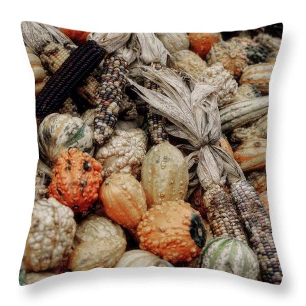 Autumn Gourds 2 Throw Pillow by Joann Vitali