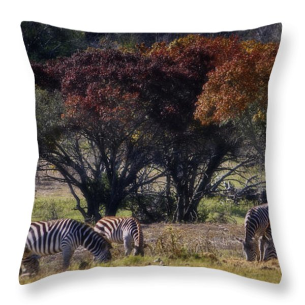 Autumn Grazing Throw Pillow by Joan Carroll