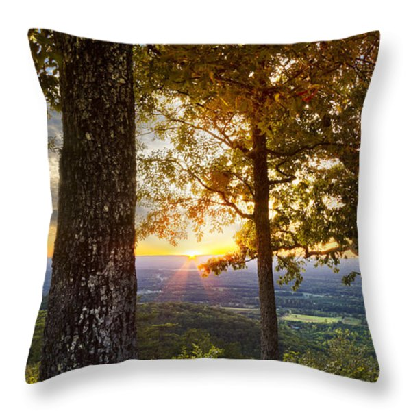 Autumn Highlights Throw Pillow by Debra and Dave Vanderlaan
