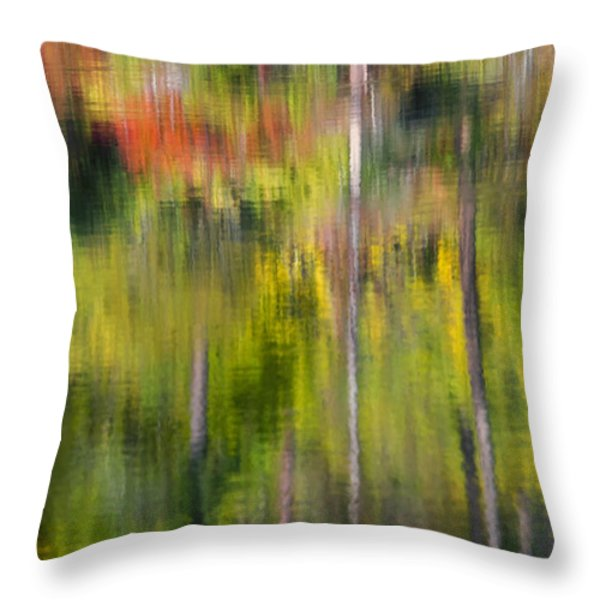 Autumn Impressions Throw Pillow by Mike  Dawson