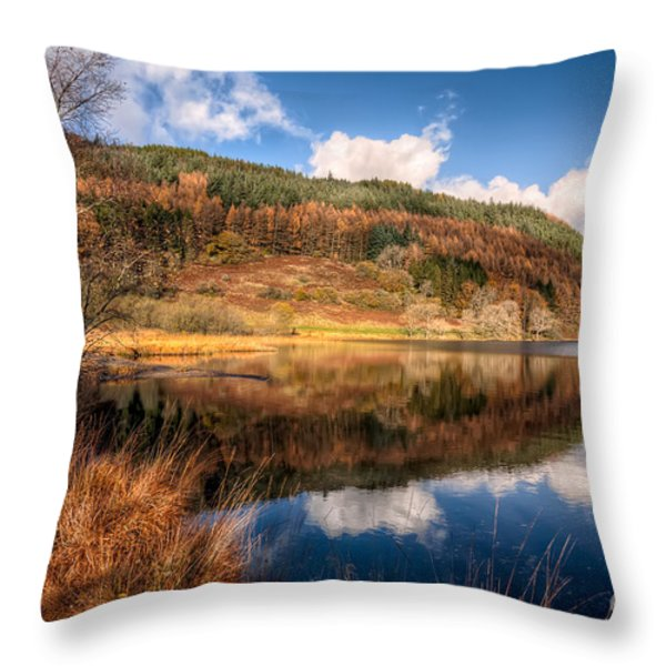 Autumn In Wales Throw Pillow by Adrian Evans