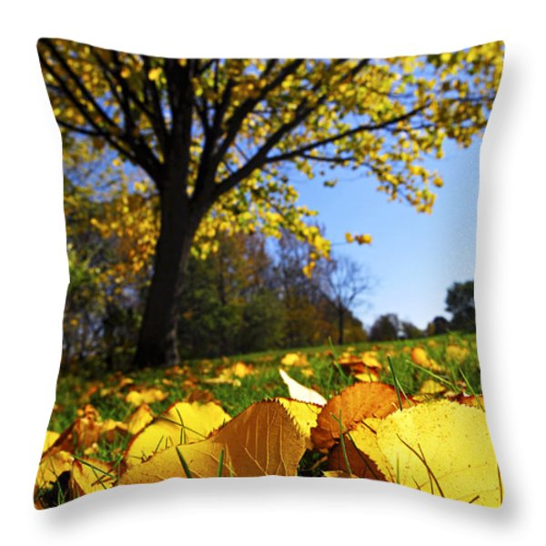 Autumn landscape Throw Pillow by Elena Elisseeva