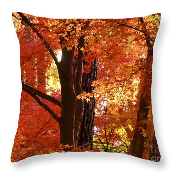 Autumn Leaves Throw Pillow by Carol Groenen
