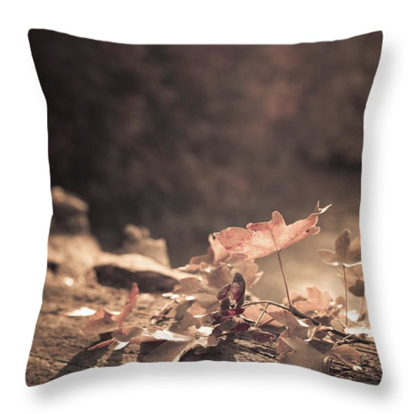 Autumn Leaves Throw Pillow by Amanda And Christopher Elwell