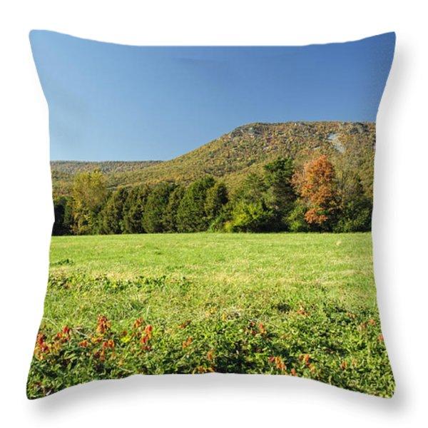 Autumn Massanutten Throw Pillow by Lara Ellis