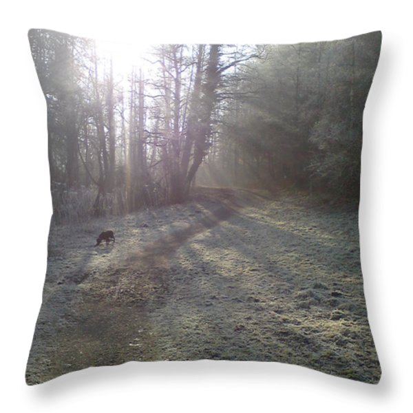 Autumn Morning 5 Throw Pillow by David Stribbling