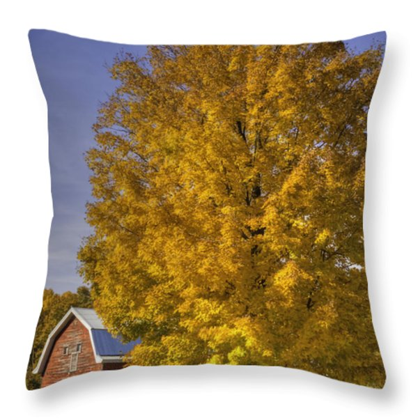 Autumn On The Farm Throw Pillow by Thomas Young