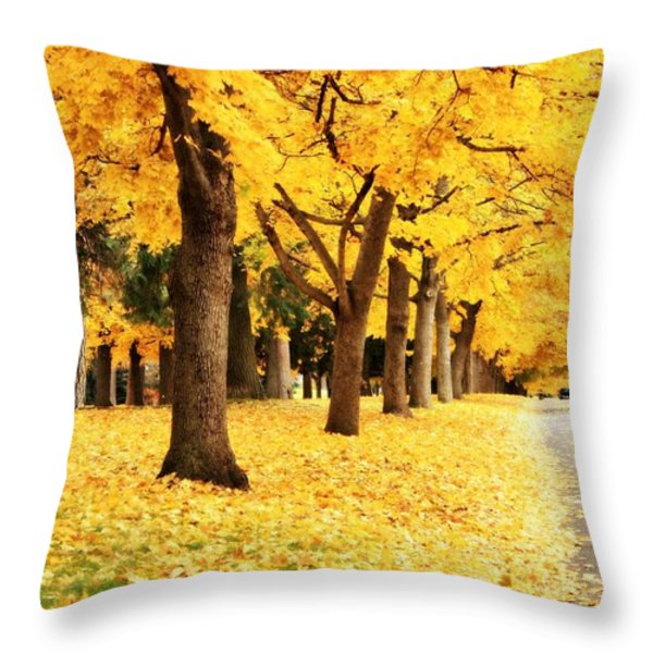 Autumn Perspective Throw Pillow by Carol Groenen