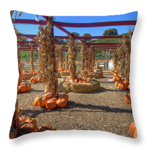 AUtumn Pumpkin Patch Throw Pillow by Joann Vitali