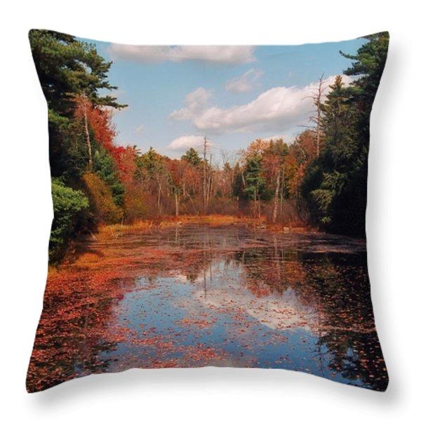 Autumn Reflections Throw Pillow by Joann Vitali