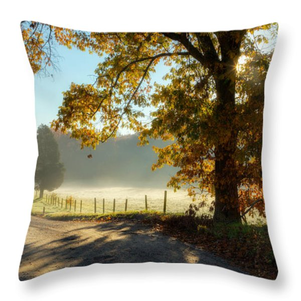 Autumn Road Throw Pillow by Bill  Wakeley