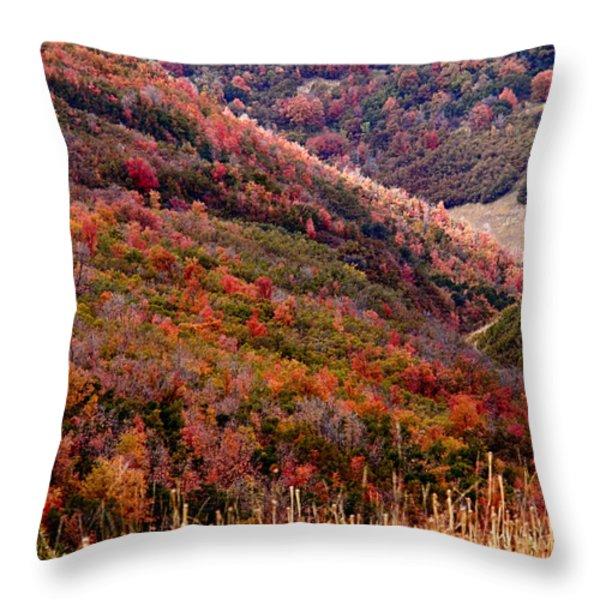 Autumn Throw Pillow by Rona Black