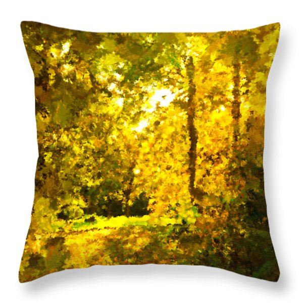 Autumn Splash Throw Pillow by Johnny Trippick
