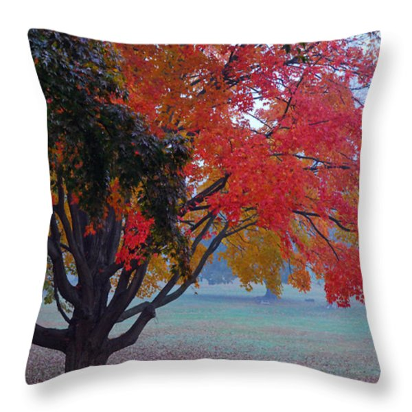 Autumn Splendor Throw Pillow by Lisa  Phillips