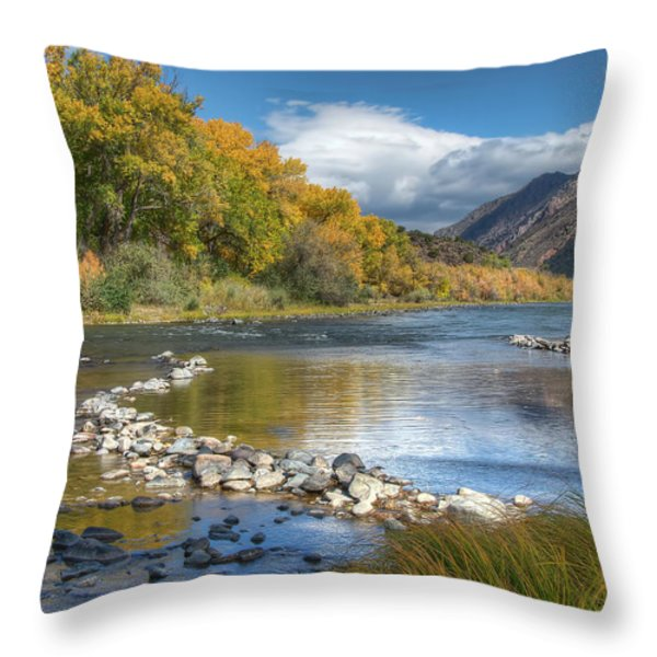 Autumn Stance Throw Pillow by Britt Runyon