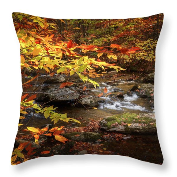 Autumn Stream Throw Pillow by Bill Wakeley