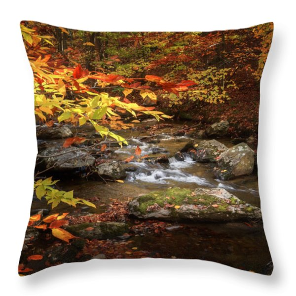 Autumn Stream Square Throw Pillow by Bill  Wakeley