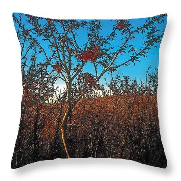 Autumn Throw Pillow by Terry Reynoldson