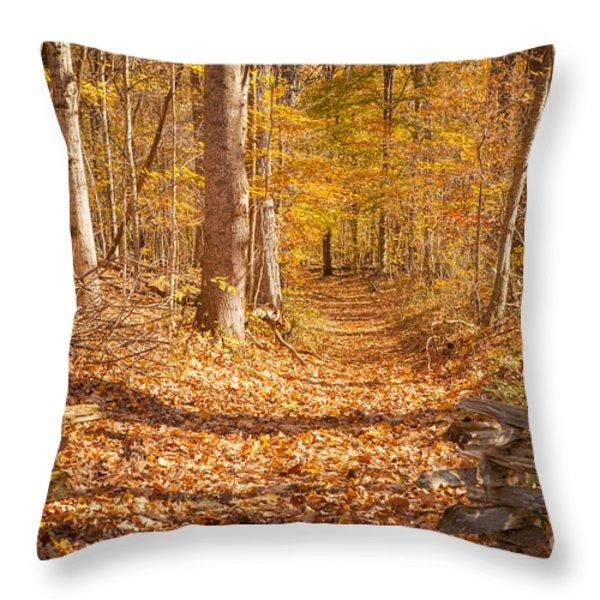 Autumn Trail Throw Pillow by Brian Jannsen