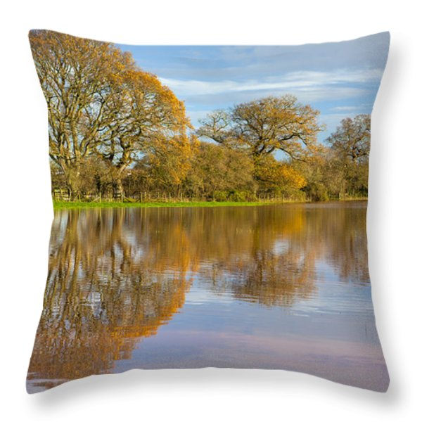 Autumn Trees Throw Pillow by Sebastian Wasek