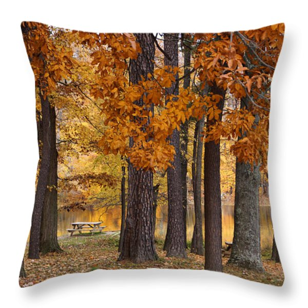 Autumn View Throw Pillow by Sandy Keeton