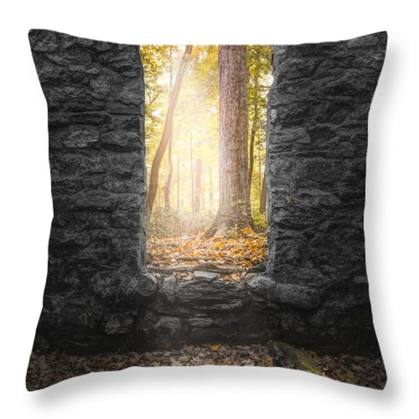 Autumn within Long Pond Ironworks - Historical Ruins Throw Pillow by Gary Heller