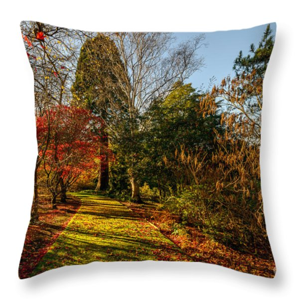 Autumnal Forest Throw Pillow by Adrian Evans