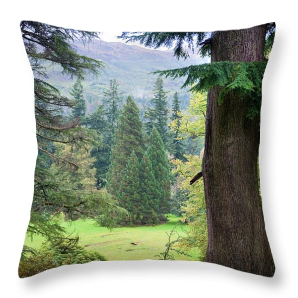 Autumnal Trees In Benmore Botanical Garden. Scotland Throw Pillow by Jenny Rainbow