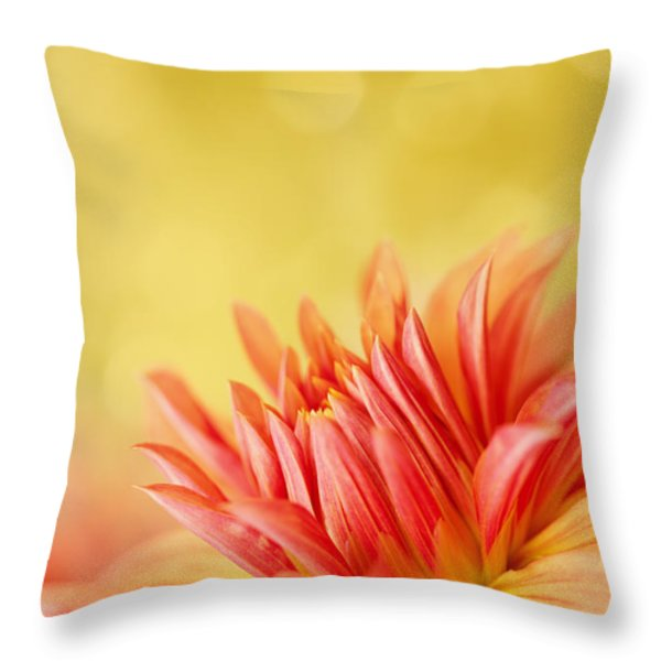 Autumns Calling Card Throw Pillow by Reflective Moment Photography And Digital Art Images
