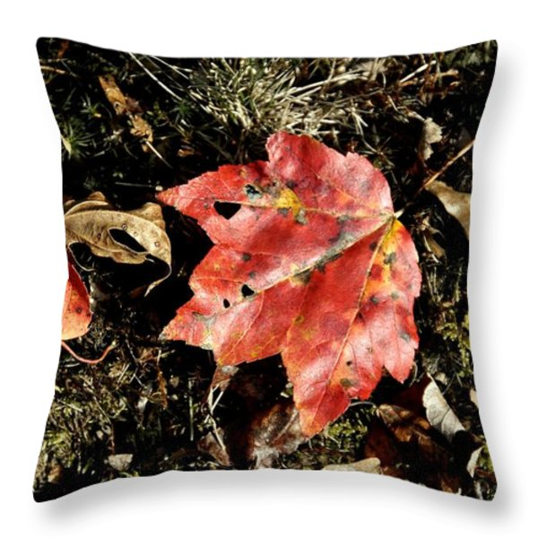 Autumns End Throw Pillow by JAMART Photography