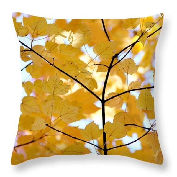 Autumn's Golden Leaves Throw Pillow by Jennie Marie Schell