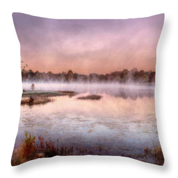 Autumns Light Throw Pillow by Darren Fisher