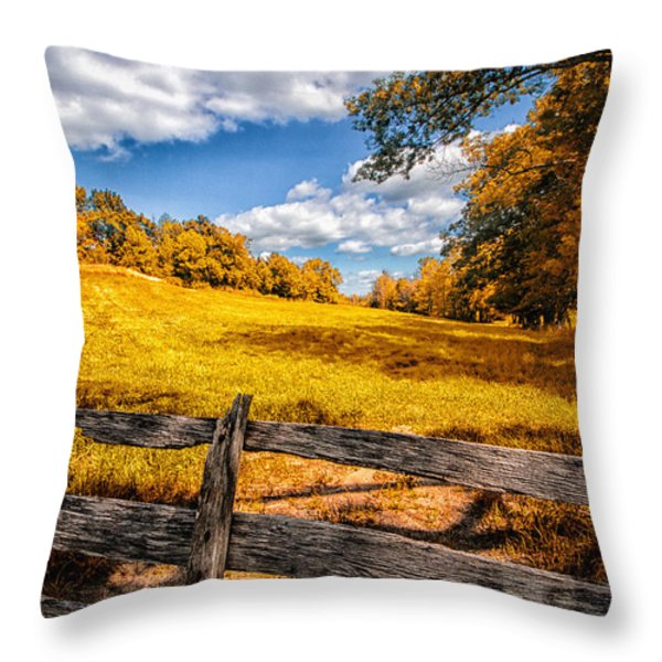 Autumns Pasture Throw Pillow by Bob Orsillo