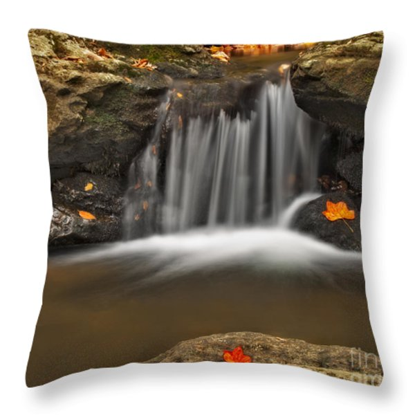 Autumns Stream Throw Pillow by Susan Candelario