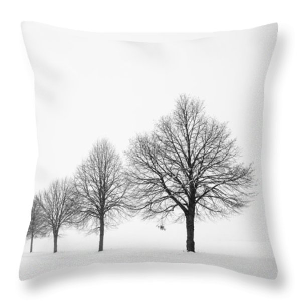 Avenue With Row Of Trees In Winter Throw Pillow by Matthias Hauser