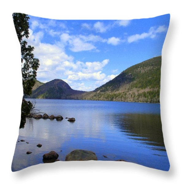 Awaken with Spring Throw Pillow by Elizabeth Dow