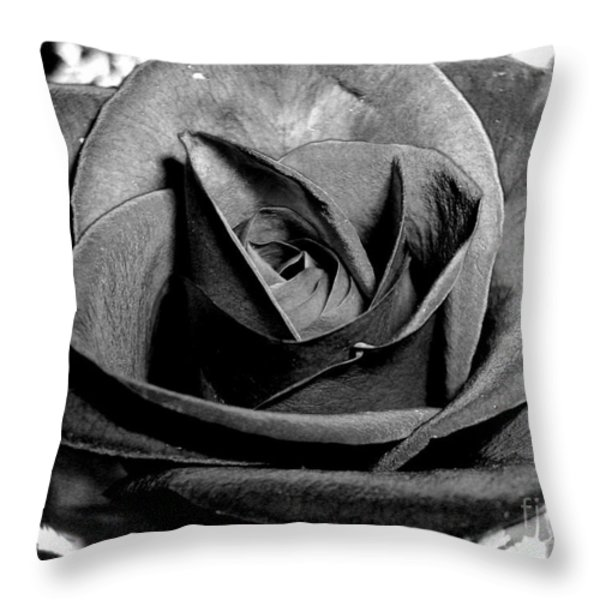 Awakened Black Rose Throw Pillow by Nina Ficur Feenan