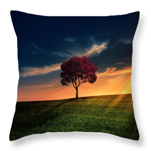 Awesome Solitude Throw Pillow by Bess Hamiti