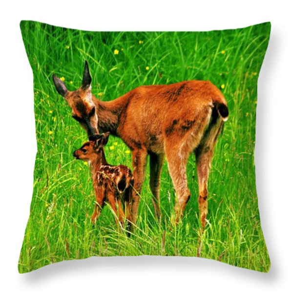 Aww Mom Throw Pillow by Benjamin Yeager