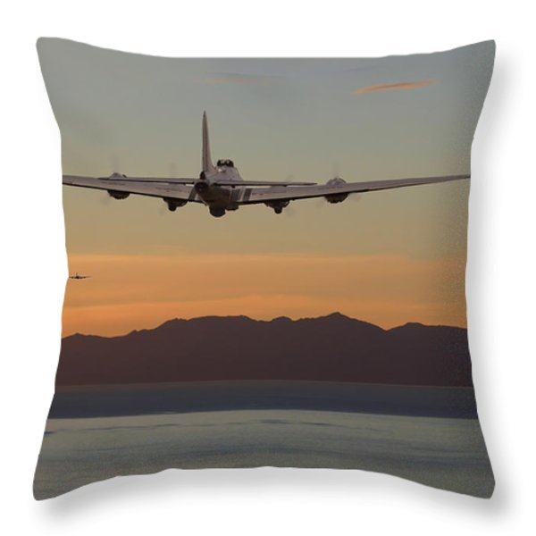 B17  Landfall Throw Pillow by Pat Speirs