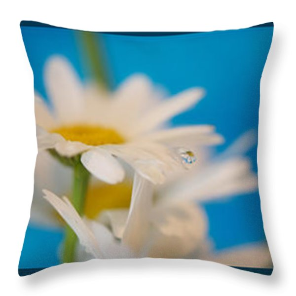 Baby Blue Triptych Throw Pillow by Lisa Knechtel