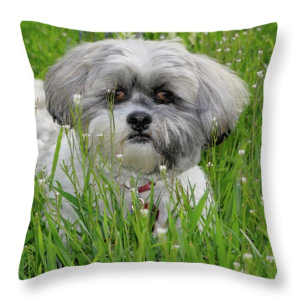 Baby Breath Throw Pillow by Arthur Fix