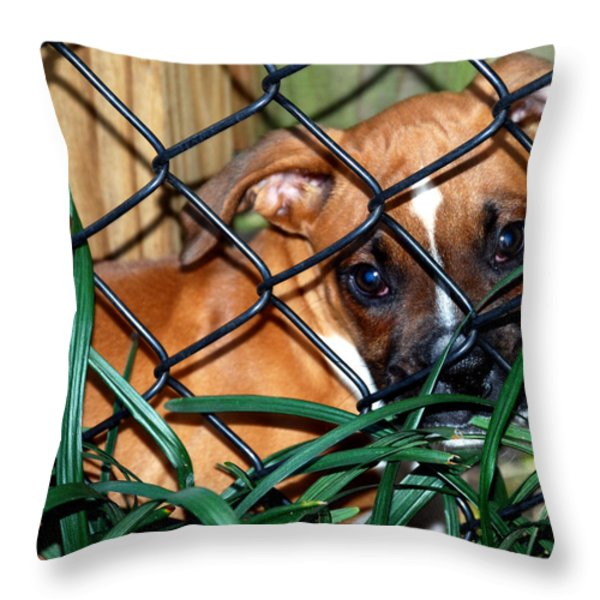 BABY GRACE Throw Pillow by Skip Willits