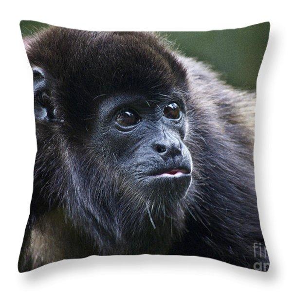 Baby Howler Monkey Throw Pillow by Heiko Koehrer-Wagner