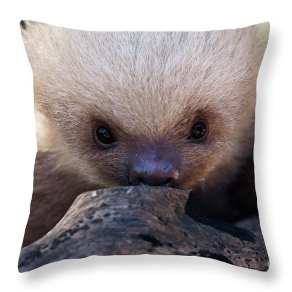Baby Sloth 2 Throw Pillow by Heiko Koehrer-Wagner
