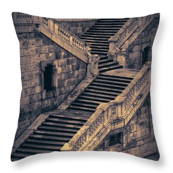 Back Entrance Redux Throw Pillow by Joan Carroll