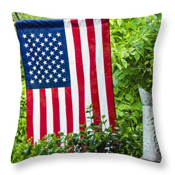 Back Porch Americana Throw Pillow by Carolyn Marshall